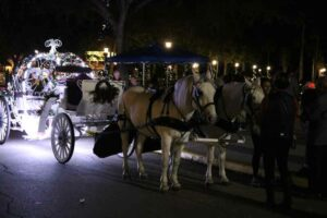One of the horse & buggy options at Now Snowing Nightly